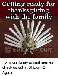 Funny Pics For Thanksgiving 25 Best Memes About Funny Anime Memes Funny Anime Memes