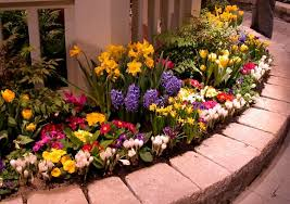 Garden Flowers Ideas How To Keep Flowers Fresher For Longer Gardening Flowers 101
