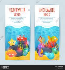 underwater sea animals vertical vector u0026 photo bigstock