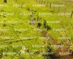 chambre agriculture saone et loire chambre d agriculture de saone et loire 100 images bienvenue