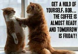Thursday Meme Funny - the coffee is almost ready bob freddy so take it steady and