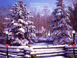 8888cc color wallpapers christmas one winter cold night wallpaper