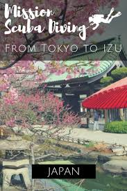 Triptrip by Best 25 Izu Ideas On Pinterest Japan Trip Trip Advisor And