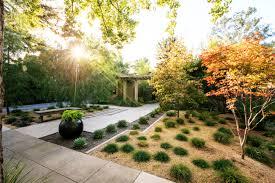 alternatives to grass in backyard 7 inspiring lawn free yards sunset magazine