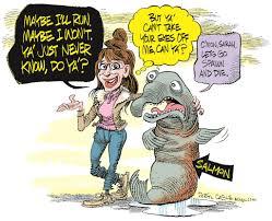 Nate Beeler Cartoons Sarah Palin Cartoons Nbc News