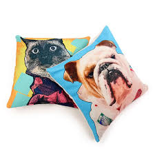 Cushion Pets Get Your Pets
