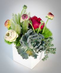 flower delivery boston succulents flower delivery in boston bloom couture floral studio