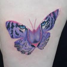 42 tiger butterfly ideas tiger butterfly tigers