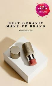 makeup storage what is the best organic makeup brands ideas on