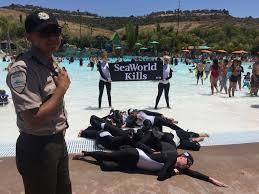 seaworld black friday deals update u0027orcas u0027 who u0027died u0027 at seaworld u0027s aquatica arrested