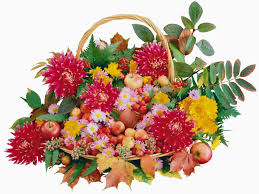 Win With Flower by Win The Heart Of Your Loved One In Lucknow With Fresh And