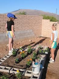 desert gardening community gardens
