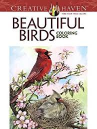 audubon u0027s birds america coloring book john james audubon