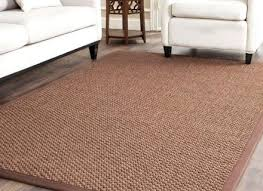 sisal area rugs houstonbaroque org