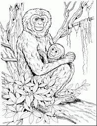 amazing printable monkey coloring pages with monkey coloring page