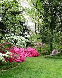 Arboretum by At The National Arboretum