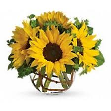 orange park florist orange park florist and gifts send the freshest flowers to