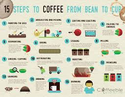 how is made how coffee is made coffee bean corral