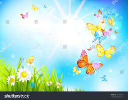 vector summer background flowers butterflies positive stock vector