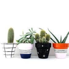 small plant pots small plastic plant pots uk small garden storage