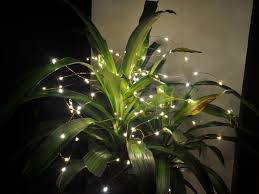 Light String Christmas Tree by 3m Copper Wire Led Light Starry Wedding String Fairy Party Lamp
