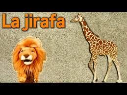 imagenes de amistad jirafas conociendo a la jirafa para niños videos educativos infantiles