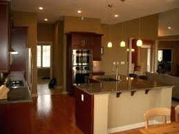 Light For Kitchen Island Convert Can Light To Pendant Light Brilliant Pendulum Lights For