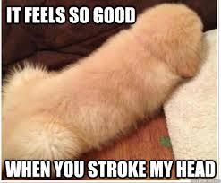 So Good Meme - it feels so good when you stroke my head misc quickmeme