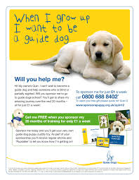 charity direct mail letter extraordinary dogs fundraising