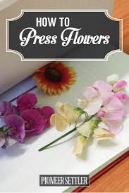 flower press how to press flowers for perfectly dried petals homesteading