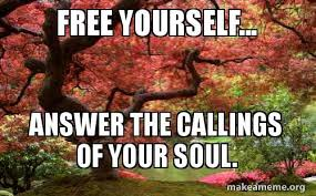 Make A Meme For Free - free yourself answer the callings of your soul poiuhjkmnb