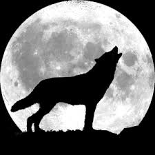 wolf moon the medicine doctorthe medicine