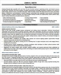 executive resume sample 9 examples in word pdf