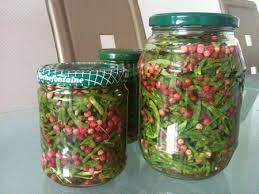 cuisiner salicorne salicornes au vinaigre et aux baies roses la cuisine de mes envies