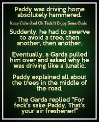 Funny Irish Memes - st patrick s day humor holiday st patrick s day pinterest