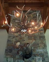 Antler Chandelier Canada Furniture Idea Amusing Elk Chandelier With Chandeliers Drokes