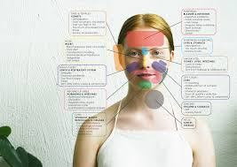Face Mapping Acne Acne Face Map Maps Google De