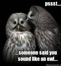 White Owl Meme - meme creator pssst someone said you sound like an owl