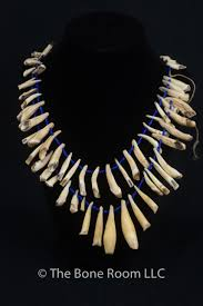 tooth necklace images Peruvian animal tooth necklace jpeg