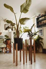 Modern Indoor Planters Best 20 Indoor Planters Ideas On Pinterest U2014no Signup Required