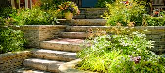 bedolla landscaping u0026 gardening services bay are services from