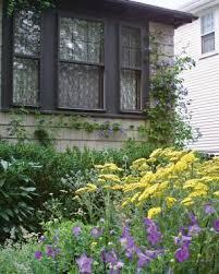 take photos that look as good as your garden finegardening