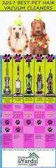 Good Vacuum For Laminate Floors Best 25 Best Pet Hair Vacuum Ideas On Pinterest Best Vacuum