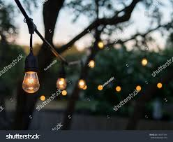 Hanging Tree Lights by Decorative Outdoor String Lights Hanging On Stock Photo 436971544