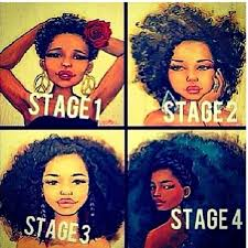 natural hair after five styles natural hair inspiration the stages of 4c hair 4c hair natural