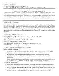 jobs for a history major 45 best teacher resumes images on pinterest elementary teacher