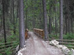 Bear Creek Trail Map Recreation Sites And Trails Bc