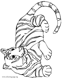 Tigers A Wild Tiger Resting Coloring Page Coloring Pages Tiger