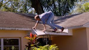 Zombie House Watch A Gnawing Problem Full Episode Zombie House Flipping Fyi