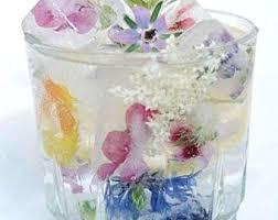organic edible flowers organic edible flowers sugar bakers bakery